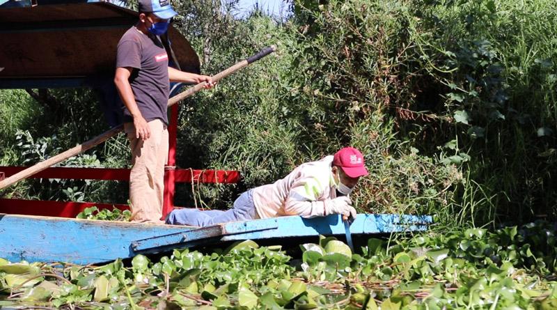 Arranca mega jornada de limpieza de canales en Xochimilco