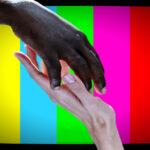 Estereotipos y perfiles: taxonomía del racismo en medios de comunicación