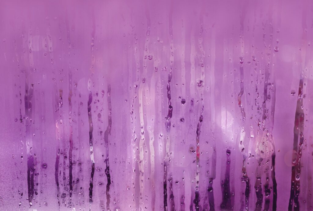 Patrullas violeta