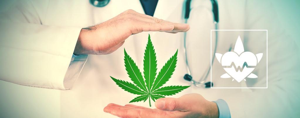 ¿Sabías qué tu médico ya te puede recetar CBD?
