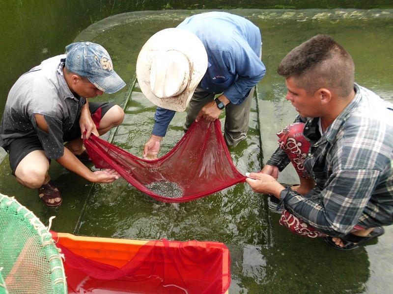 Inicia Agricultura-Conapesca periodo de trámites de aviso de siembra para actividades acuícolas en el país