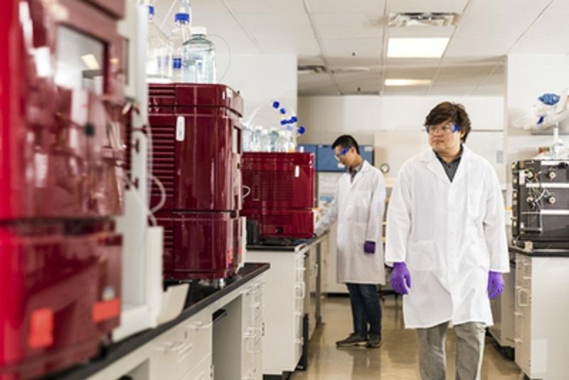 Boehringer Ingelheim y Enara Bio unen esfuerzos para desarrollar terapias inmunológicas innovadoras contra el cáncer