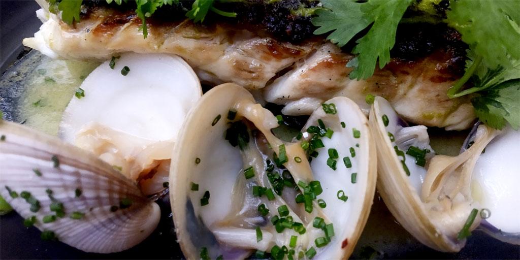 Abre Casa Kun, donde la comida de mar te recuerda el sabor de la vida