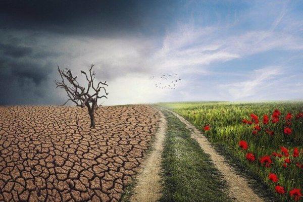 López Obrador informa al mundo acciones para reducir riesgos por cambio climático