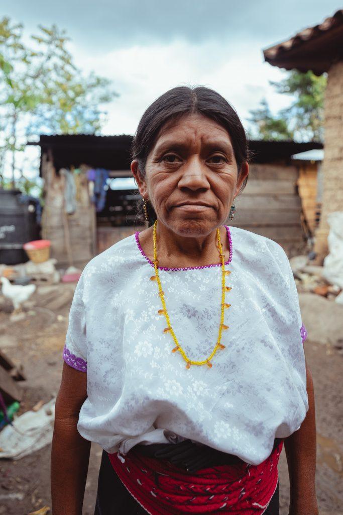 Aprueban por unanimidad reconocer las obras de pueblos y comunidades Indígenas como objeto de protección