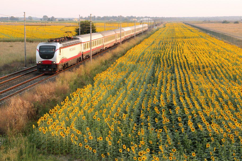 Avanzan en comisiones reformas a la Ley Reglamentaria del Sistema Ferroviario