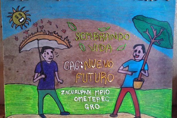 Sembrando Vida reforestará Guerrero con casi 27 millones de árboles