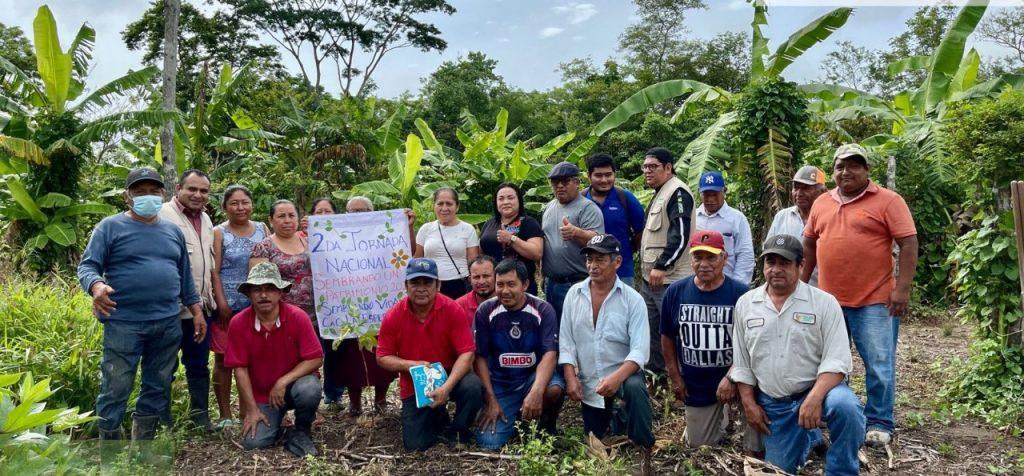 Llegará Tabasco a casi 124 millones de árboles en Jornada Nacional de Siembra