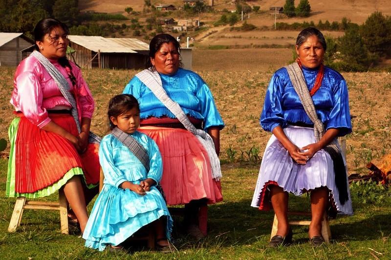 Conocimiento tradicional de pueblos indígenas se sumará al científico para enriquecer estrategia sobre sistemas alimentarios