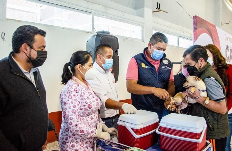 Inició en Coacalco la Jornada Nacional de Vacunación Antirrábica Canina y Felina