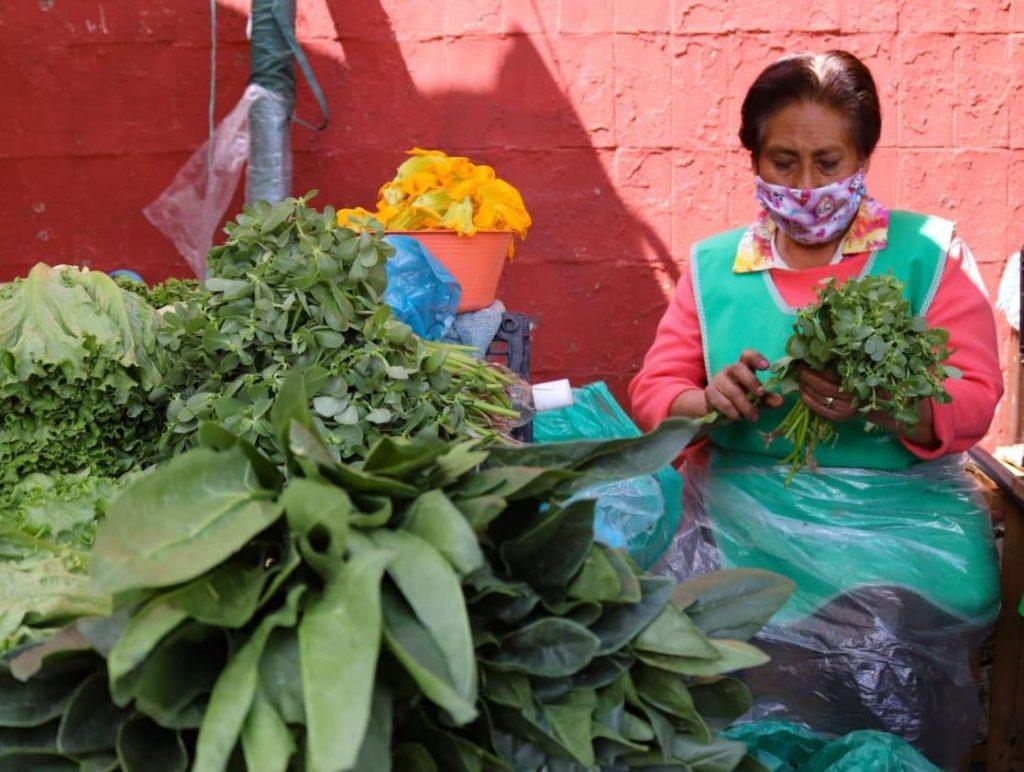 Otorgan a chinamperos permiso para comercializar sus hortalizas en plazas públicas