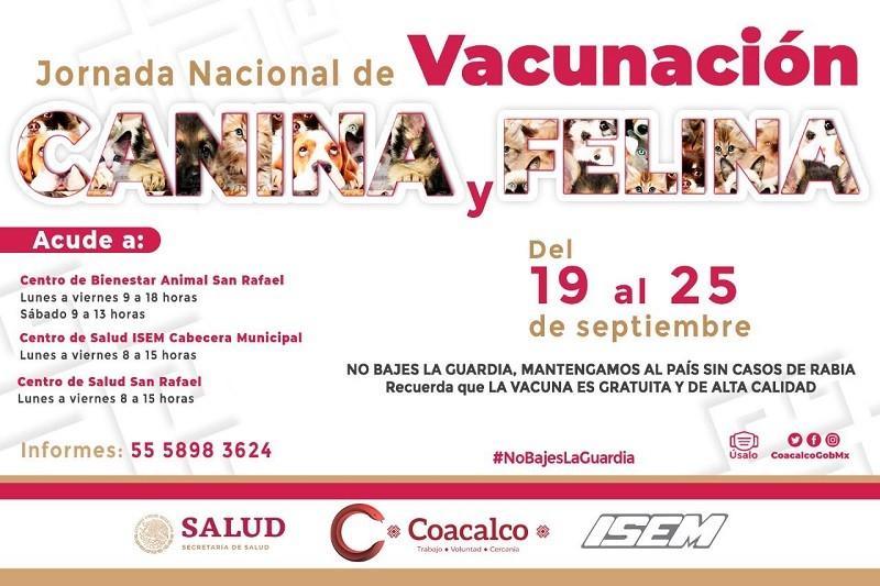 El Gobierno de Coacalco se suma a la Jornada Nacional de Vacunación Canina Y Felina